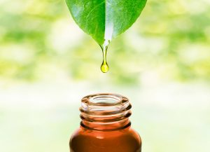 Essential Oils Class at Bel Aire