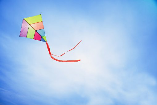 Kite in the air