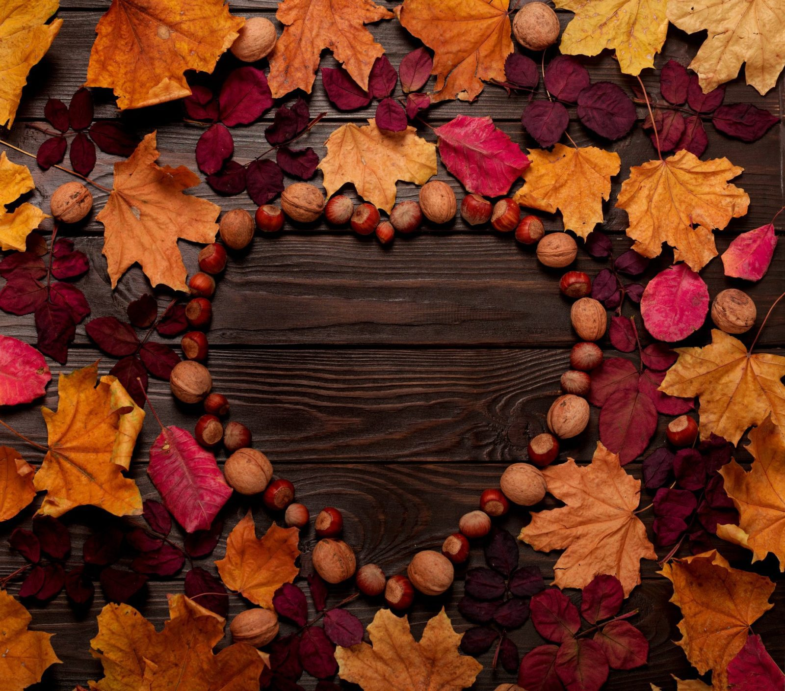 Flat lay frame in the form of a heart from autumn crimson and yellow leaves, hazelnuts and walnuts on a dark wooden background.