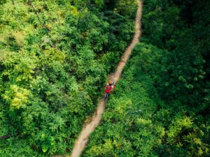 Aerail view of cross country biking woman cyclist with mountain bike walking on tropical rainforest trail